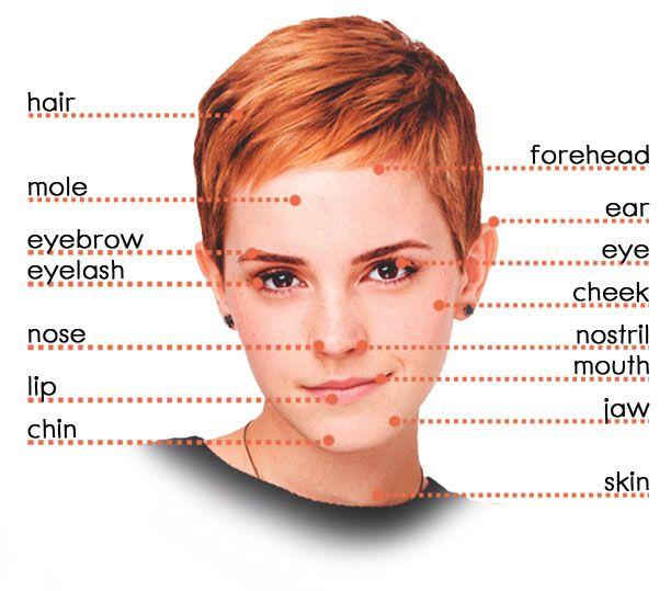 Как по английски слово макияж